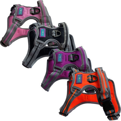 Picture of Sports Harness - Reflective