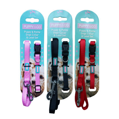 Picture of Plain Nylon Puppy / Small Dog Collar and Lead