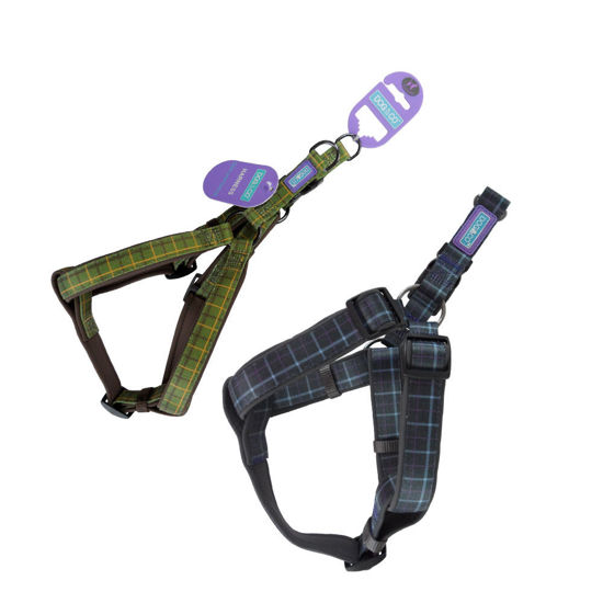 Picture of Country Check Harness